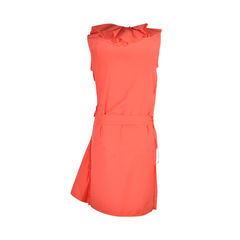 Lanvin ruffled dress 2