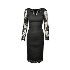 Lace Sleeved Stretch Dress