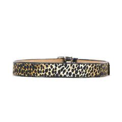 D g leopard print belt 1