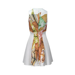 Clover canyon geometric nature print flare dress 2