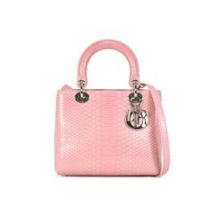 Christian dior python lady dior bag 2?1503568163