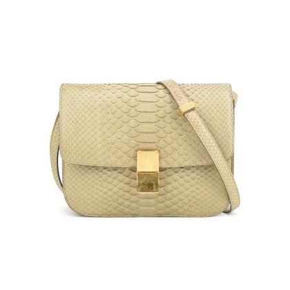 Authentic Second Hand Céline Python Box Bag (PSS-048-00126)