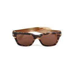 America Francis Brown Puma Frame Sunglasses