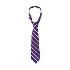 Bicolour Striped Neck Tie