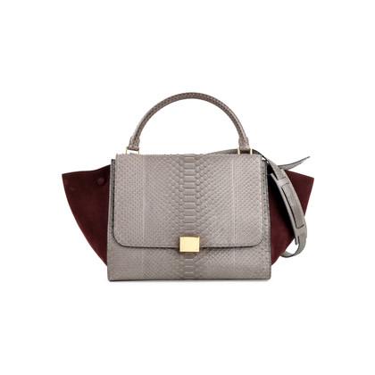Authentic Second Hand Céline Trapeze Python Bag (PSS-470-00038)