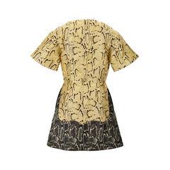 Stella mccartney python print dress 2?1526872469