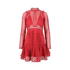 Hall Lace Dress