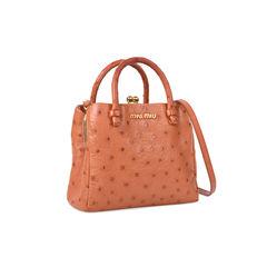 Miu miu ostrich mini bag 2?1531730816