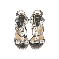 Snakeskin Camellia Embellished Wedge Sandals