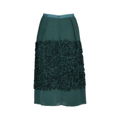 Dries van noten ruffle applique skirt 2?1533618592
