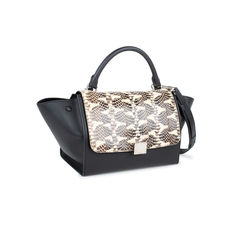 Celine watersnake skin flap trapeze bag 2?1537262179