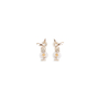 Authentic Pre Owned Chanel I Love CC Double Earrings (PSS-328-00014) - Thumbnail 2
