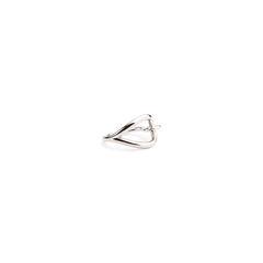 Hermes jumbo scarf ring 2?1546407090