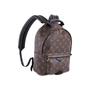 Authentic Pre Owned Louis Vuitton Palm Springs PM Bagpack (PSS-623-00001) - Thumbnail 1