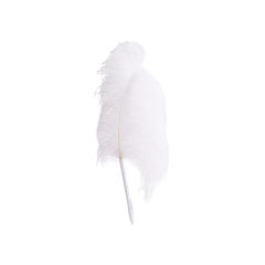 Ostrich Feather Pen