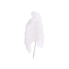 Maison martin margiela ostrich feather pen 2?1557118624