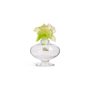 Authentic Second Hand Daum Orchid Perfume Bottle (PSS-801-00039) - Thumbnail 3
