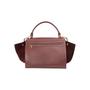 Authentic Second Hand Céline Suede Trim Trapeze Bag (PSS-A70-00010) - Thumbnail 2